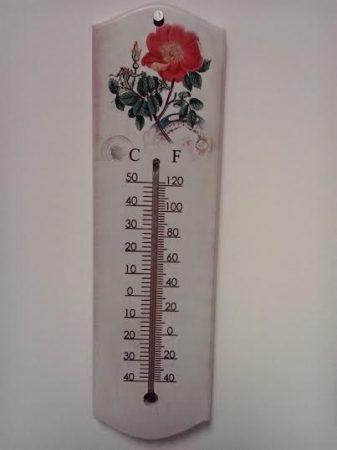 Virágos hőmérő 5