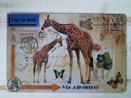 fém kép zsiráf