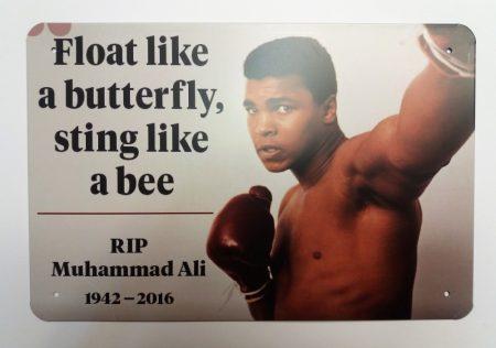 Fém kép: Ali