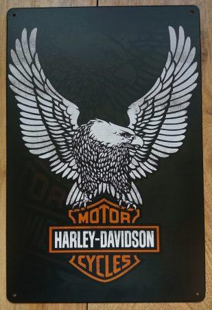 Fém kép: Harley Davidson