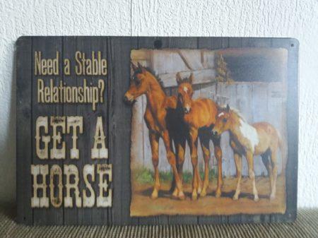 fém kép: get a horse